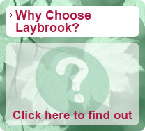 why-choose-laybrook-button
